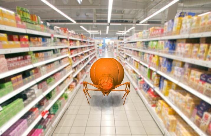 spidersupermarket